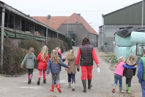 melkveebedrijf Familie Flipsen (Den Hout)
